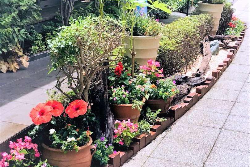 夏の花壇の設置例