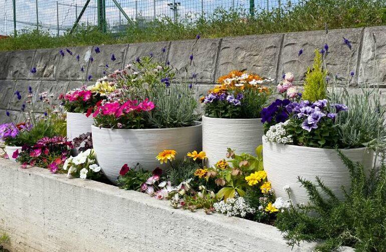 春の花壇の設置例